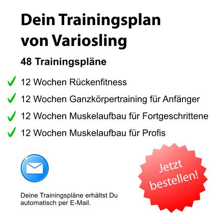 Trainingsplan Muskelaufbau PDF