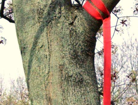 Sling Trainer Befestigung - Baum Ast