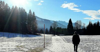 2. Advent - Schlank durch die Weihnachtszeit mit Bewegung & Sling Training!